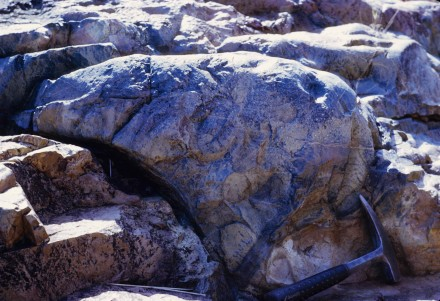 Figure 10 - Outcrop of pillow lavas (Barberton, S. Africa).
