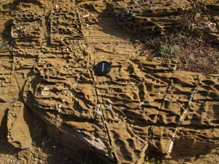 Figure 32 - Boxwork weathering on flisch sandstones (Cabo Sardão, Portugal).