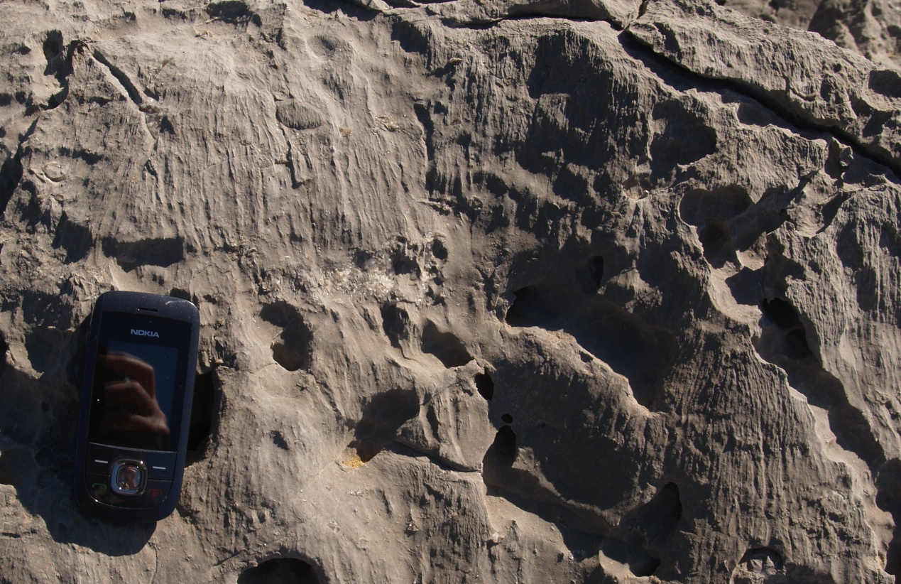 Figure 54B - Effect of sand blasting on a limestone outcrop (Praia do Abano, Sintra coast, Portugal