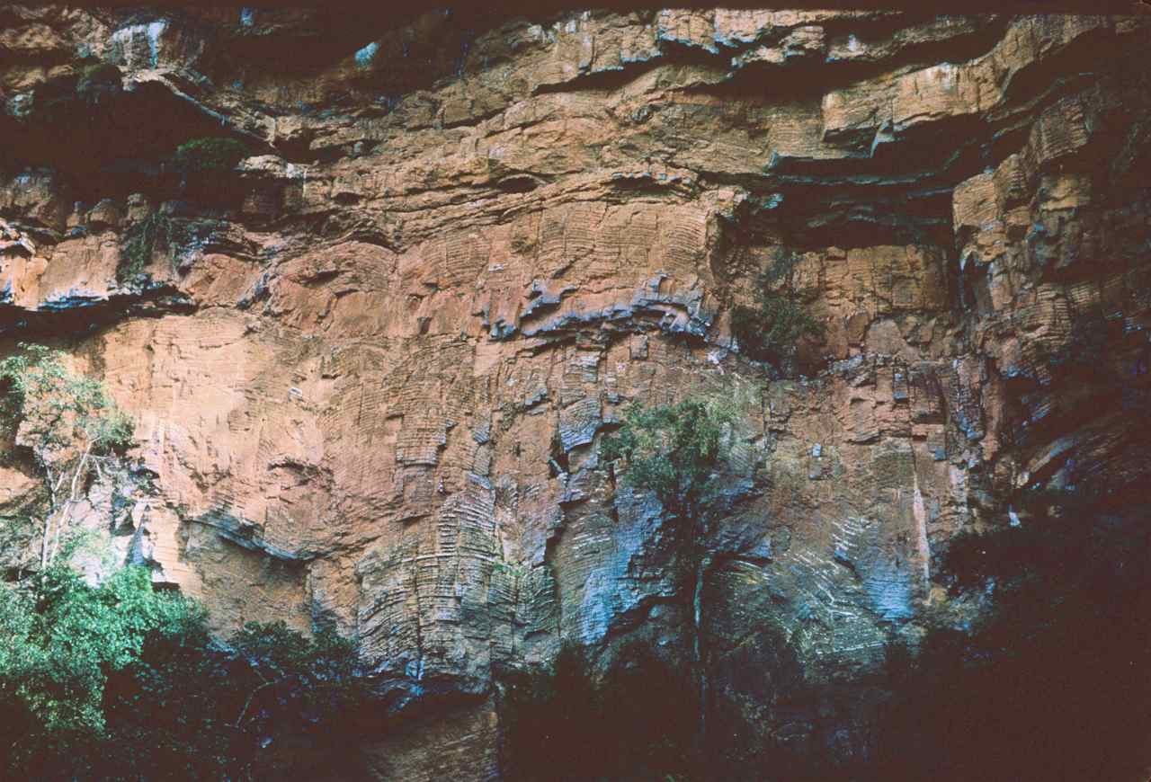 Figure 115 - Column of well marked alternating dolomite and chert (positive relief) (Sabie River. S. Africa)