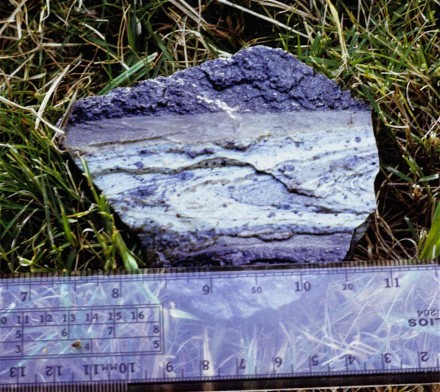 Figure 133 - fault plane filled with mylonite (Buffelsfontein Mine, Stillfontein, South Africa).