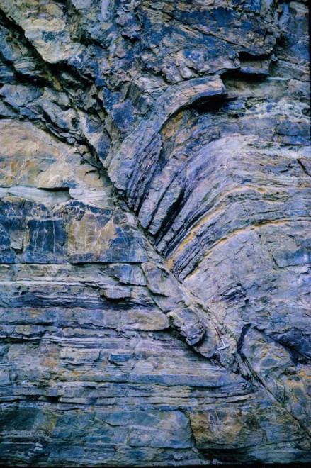 Figure 129 - Reverse fault with drag of sediments on the up-throw side (Cape Peninsula, South Africa)