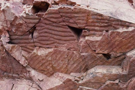 Figure  108 - Ripple marks in quartzite (Ferro Quarry, Pretoria, S. Africa).