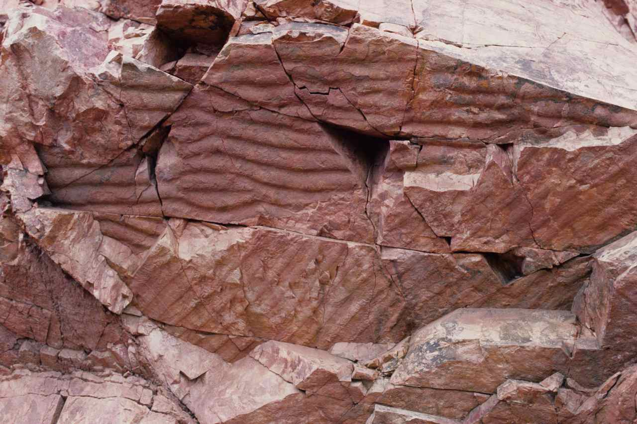 Figure 109 - Ripple marks in quartzite (Ferro Quarry, Pretoria, S. Africa).